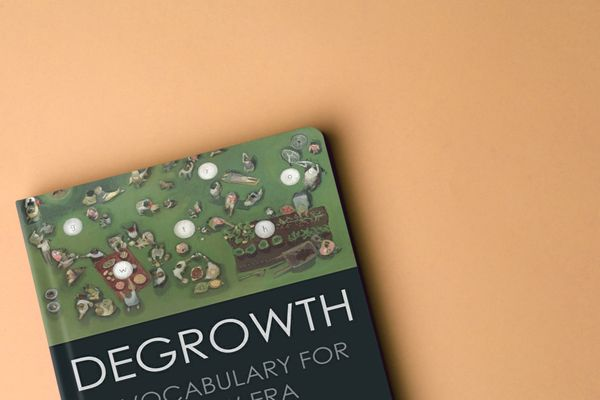 "Dutch summary of the book ""degrowth"""