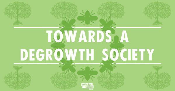 Video-debate: Towards a Degrowth Society